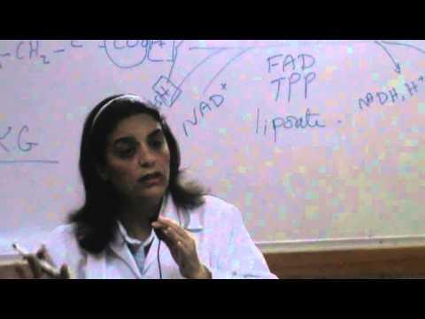 6) Dr.Hanan Hosny 21/10/2014 [ Generation of high energy bonds - Krebs cycle ]