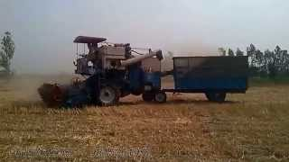 Make Straw (Toodi) With Combine New Technique In Kangna (9815761952)
