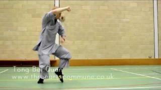 Repeat youtube video Shaolin tong bei quan 少林通臂拳