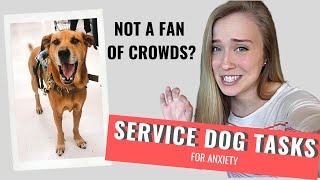 ANXIETY Service Dog Tasks | CROWD CONTROL