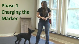 First Thing To Teach A Dog (k9-1.com)