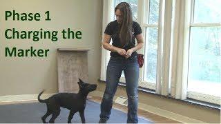 First Thing to Teach a Dog (K9-1.com)