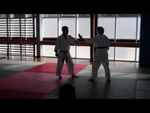 No 11 Inoue Yoshiomi Sensei at the British Aikido Association Summer School 2016