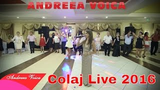 Download Andreea Voica - Nunta Adriana & Alex (Colaj Brauri live 2016)
