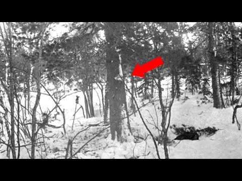 Why Has Russia Just Started An Investigation Into The Dyatlov Pass Incident?