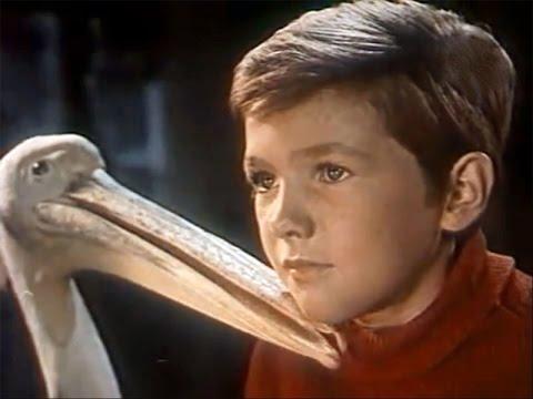 The Blind Bird  - Slepaya Ptitsa - 1963