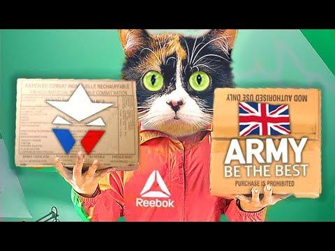 WAS ESSEN IN DER FRANZOSISCHE ARMEE VS ENGLAND