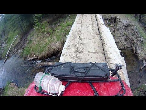 Bridges, Beavers & Cabin Leavers