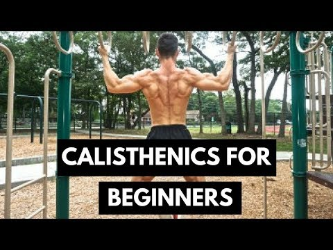 The Ultimate Guide To Gaining Muscle With Bodyweight/Calisthenics Training | Novice, Inter, Advanced