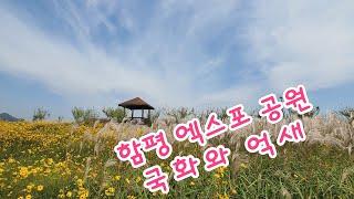 남도여행 섬 여행11 함평 엑스포공원