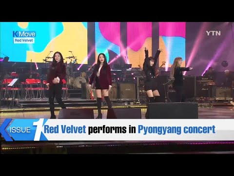 Red Velvet performs in Pyongyang concert / YTN KOREAN