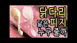 (미간) 눈썹사이 피지제거 #LOWi