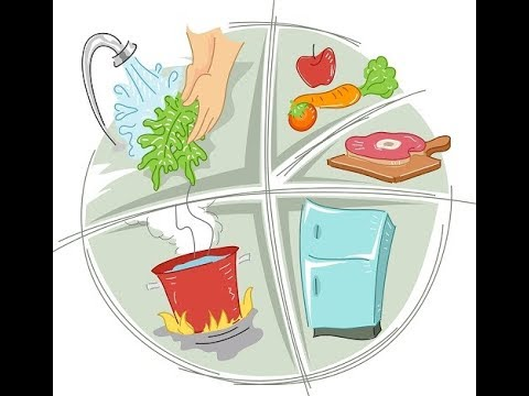 Why Is My Salad Making Me Sick? Foodborne Illnesses and Food Safety