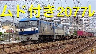 JR貨物 EF210-11+EF66 128ムド付き2077レ 新長田・離宮道踏切2019.10.14