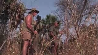 Big Bore Buffalo-Tanzania Cape Buffalo Hunt