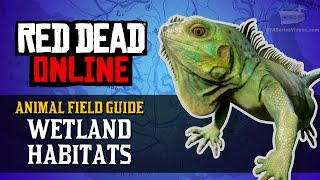 Red Dead Online - Wetland Habitats Animal Locations Guide [Naturalist Role]