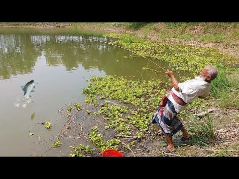 Best Hook Fishing Ever | Super Fast Fishing by Hook | You Can't Believe !