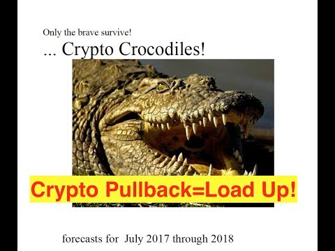 Crypto Pullback...LOAD UP! (Bix Weir)
