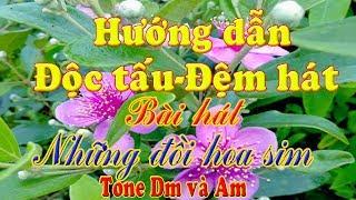 Hướng dẫn độc tấu và đệm hát bài hát những đồi hoa sim Tone Dm và Am