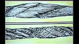 Ретровидео для стропальщика и крановщика (БПР)