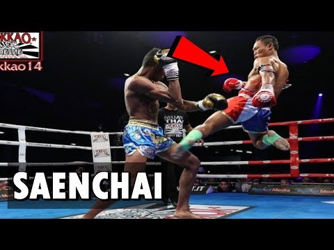 Saenchai (Highlight)