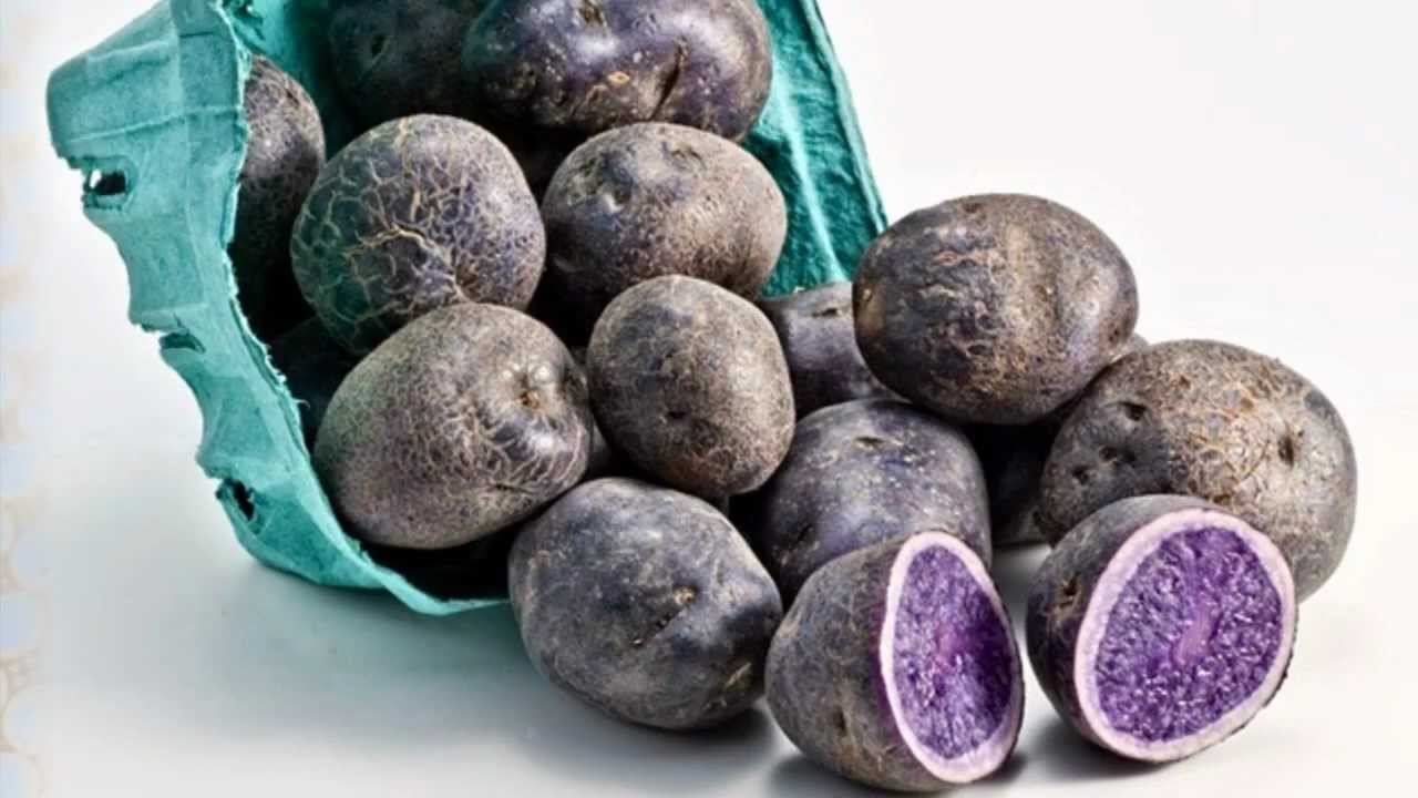 фото необычные овощи и фрукты