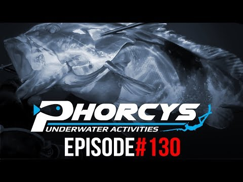 PHORCYS Spearfishing Worldwide Videos #130 - Underwater Activities 2019