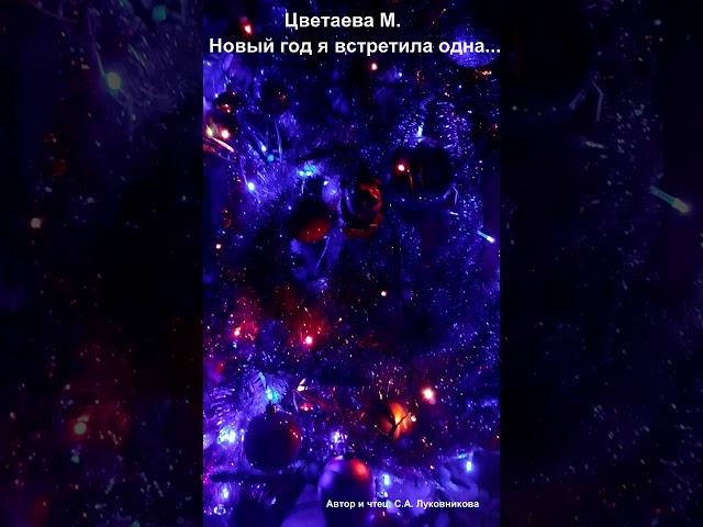 Изображение предпросмотра прочтения – СветланаЛуковникова читает произведение «Новый год я встретила одна» М.И.Цветаевой