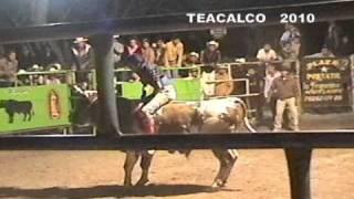 TOROS TEACALCO 2010
