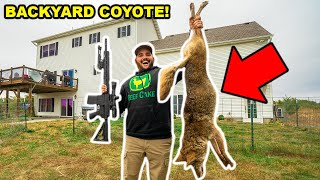 My First COYOTE in My BACKYARD!!! (Lucky Shot)