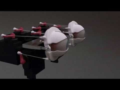 Blender animation Animatronic eye design servo placement