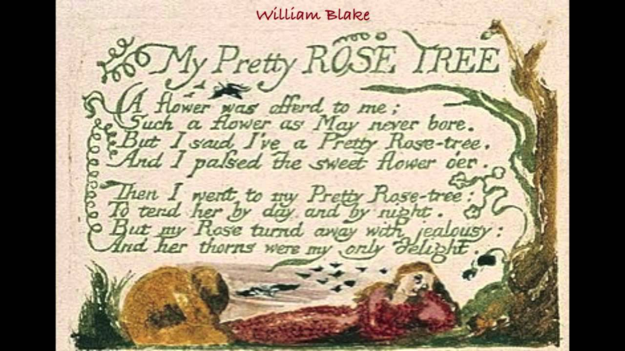 red red rose by william blake Robert burns' 'a red, red rose' celebrates eternal love in multiple ways this interactive quiz and printable worksheet can be used at any time to.