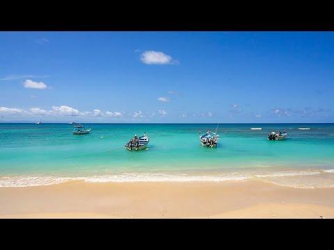 One day Tobago Getaway