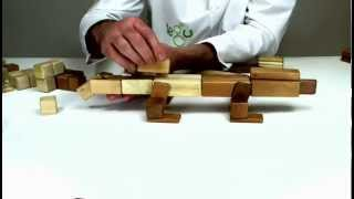 Wooden Building Blocks From Tegu - How To Build A Lizard