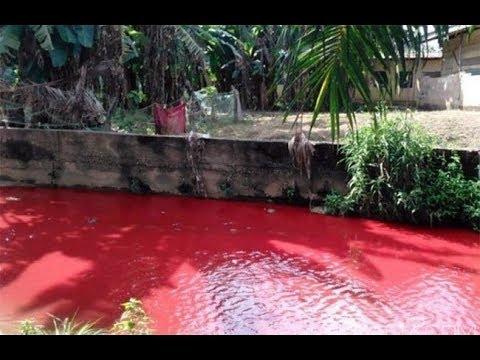 INSOLITE! rivière de sang au Ghana