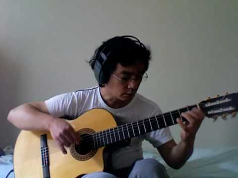 A Day In The Life (Fingerstyle Guitar)