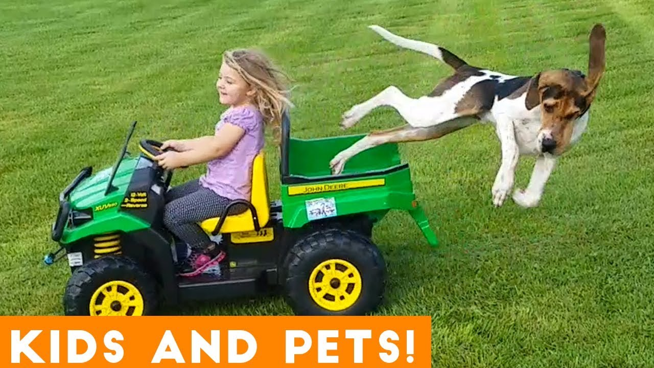 Most Amazing Kids and Animals Compilation