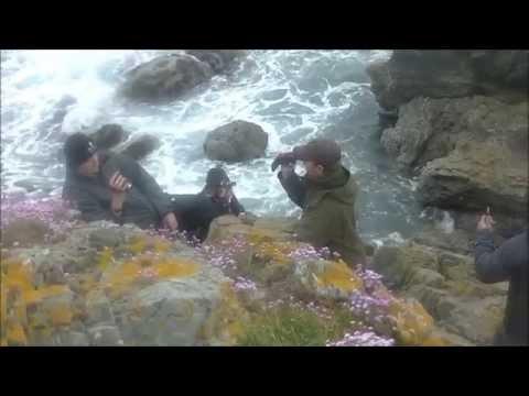 Scottish Seal Shot 2nd June 2015 in Aberdeenshire