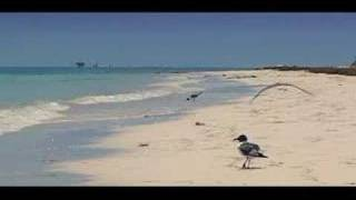 #16 RELAXATION NATURE TV - OCEAN WAVES - TOP 20 BEACHES