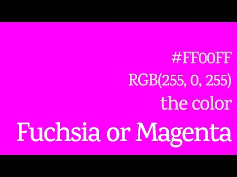 Fuchsia or Magenta Color