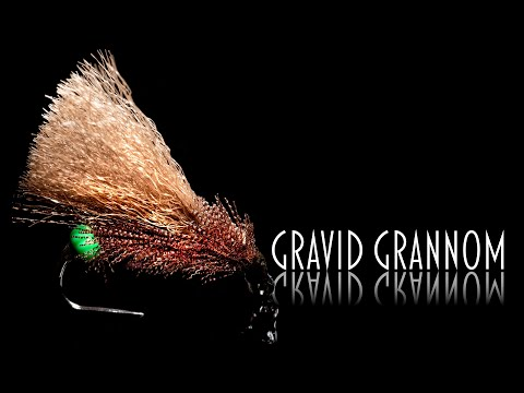 Gravid Grannom: Tying And Fishing An Indicator Fly For The Jig Duo Method.