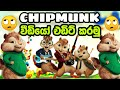 Create Chipmunk Version Of Any Song Using An Android pone -Sinhala