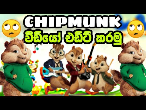 Download How To Make Chipmunk S Version Songs In Sinhala MP3