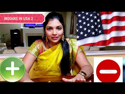 POSITIVE AND NEGATIVE FOR INDIANS IN USA 2| PRIYAMEENA MANOHARAN