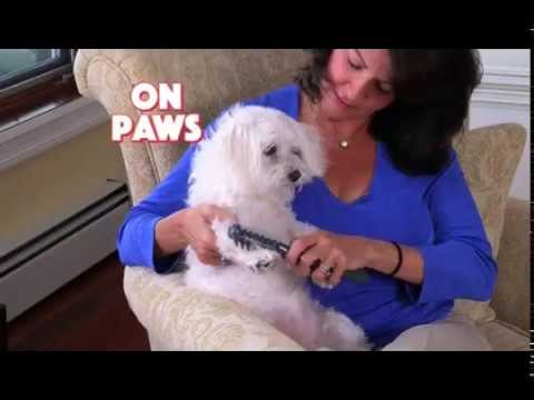 dog knots in woman