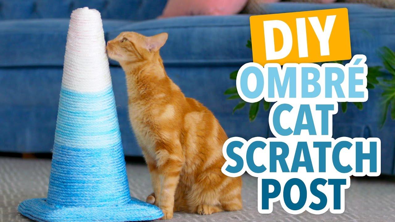 Diy Ombre Cat Scratching Post Hgtv Handmade