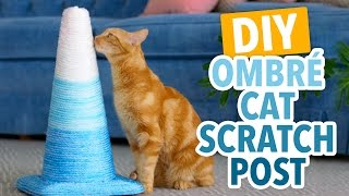 DIY Ombré Cat Scratching Post - HGTV Handmade
