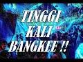 Dj Breakbeat High Party 2019 Fullbass  Tinggi Kali Bangkee !!