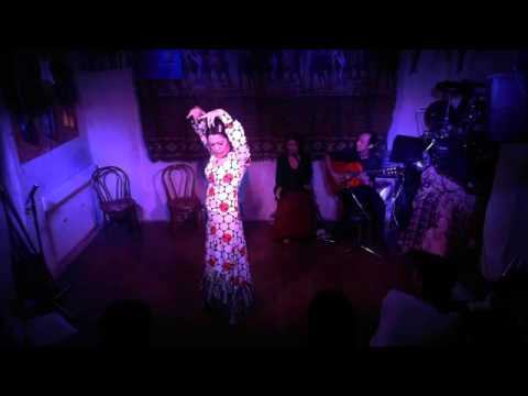 2015-07-09 Flamenco Night vol.26 02