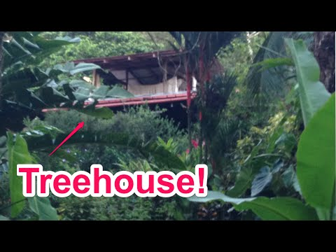 Treehouse Living - La Loma Jungle Lodge in Panama